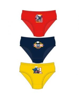 BOYS THOMAS 3PK BRIEFS TD9752