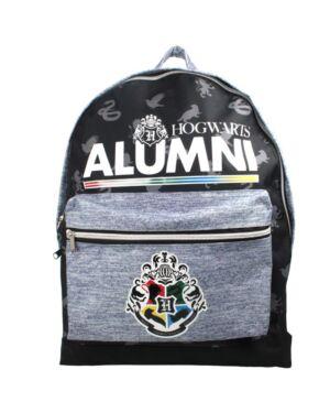 Harry Potter Hogwarts Alumni Black Childrens Teen Large Roxy Backpack School Bag PL554